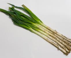 長ネギ 葉 栄養 効果 カロリー