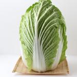 白菜は英語では何て?発音や意味について!