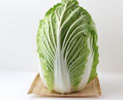 白菜 英語 発音 意味