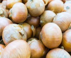 玉ねぎ カット 保存方法 期間 栄養
