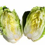 白菜の芯!再生させることはできる?
