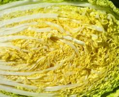 白菜 切り口 変色 原因 対策