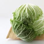白菜の黒斑病と白斑病!対策方法は?
