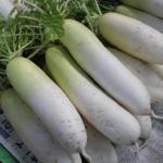 大根の部位の名称と栄養とは?調理法と食べ方について!