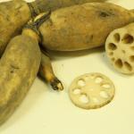 水田でのレンコン栽培とはどのようなもの?