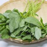モロヘイヤの栄養を摂れる食べ方とは?炒めると栄養はどうなる?
